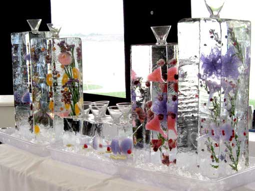 Brilliant Ice - Ice Luge